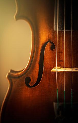 Violin_closeUp_300px